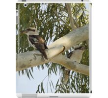 Kookaburras In a Tall Gum Tree iPad Case/Skin