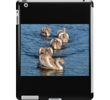 Almost Adults............. iPad Case/Skin