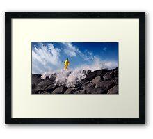 Ocean Tamer Framed Print