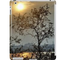 Summer Evening iPad Case/Skin
