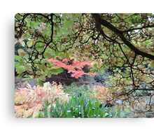 Autumn: Branches Lowered Canvas Print