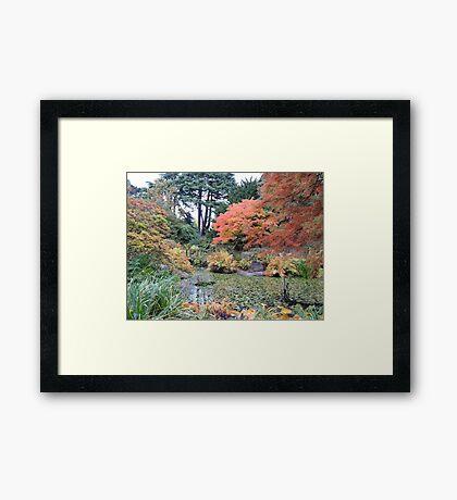 Autumn: Arrived Framed Print