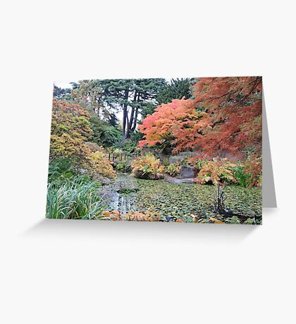 Autumn: Arrived Greeting Card