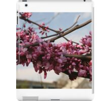 Tree Study 11 iPad Case/Skin