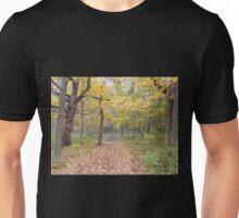 Leaf Strewn Path Unisex T-Shirt