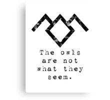 Suspicious owls Canvas Print