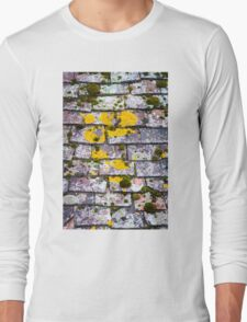 Background of old roof covered with tiles Long Sleeve T-Shirt