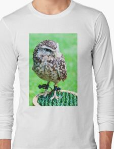 Close up portrait of little Owl against green background Long Sleeve T-Shirt