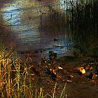 River Runes by RC deWinter
