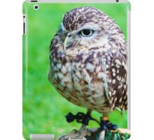 Close up portrait of little Owl against green background iPad Case/Skin