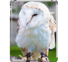 View of Barn owl sitting on falconer glove iPad Case/Skin