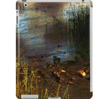River Runes iPad Case/Skin