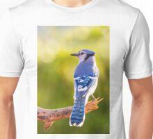 Blue Jay in October Unisex T-Shirt