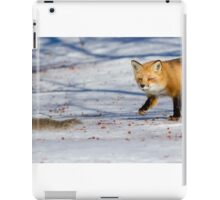 The squirrels hunter iPad Case/Skin