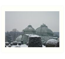 Austria in winter Art Print