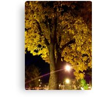 Yellow Autumn Tree at Night Canvas Print