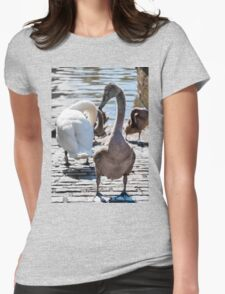 Beautiful swan familiy with nestlings in lake Womens Fitted T-Shirt