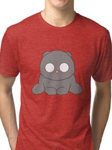 Fluffy grey kitty Tri-blend T-Shirt