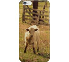 Keeper of the Gate... iphone cases  iPhone Case/Skin