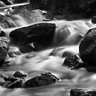 Slow Flow by David W Bailey