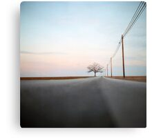 A Lonely Tree on a Long Road Metal Print