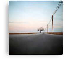 A Lonely Tree on a Long Road Canvas Print