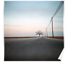 A Lonely Tree on a Long Road Poster