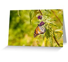 Brilliantly Colored Monarch Butterfly Greeting Card