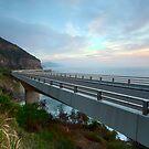 Sea Cliff Bridge, Coalcliff NSW by Malcolm Katon