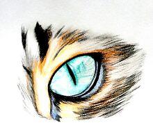 Cat Eye by AspireInspire