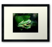 He had his eye on me...or was it a grasshopper? Framed Print