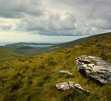 View From Conor Pass. by Terence Davis