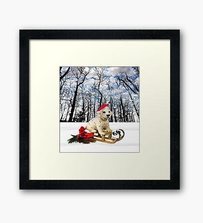 Sleigh Ride Framed Print