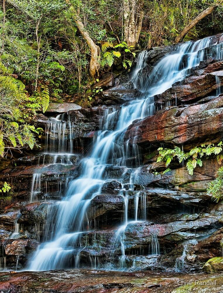 Aqua Veil, Somersby Falls by Chris  Randall