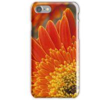 Orange Phone Cover iPhone Case/Skin