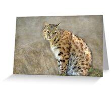 Bobcat Greeting Card