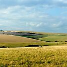 Homeland View by mikebov