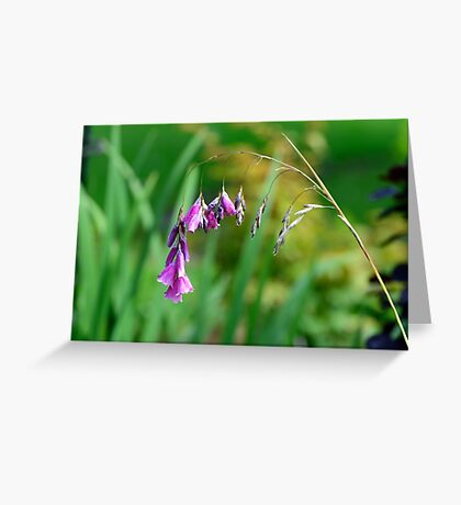 Angel's fishing rod flower Greeting Card