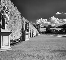 Great Parterre, Gardens of Schönbrunn, Vienna by Rodney Johnson