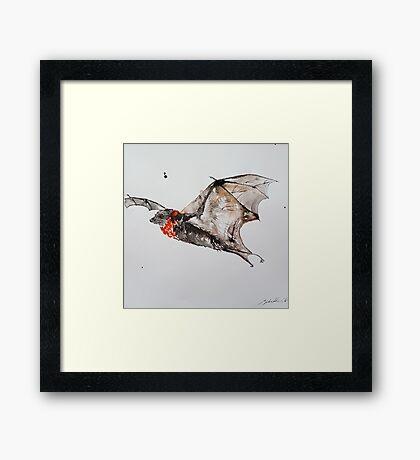 Furry grey fruitbat by Liz H Lovell  Framed Print