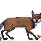 FOX by Hares & Critters
