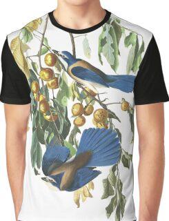Florida Scrub Jay - John James Audubon Graphic T-Shirt