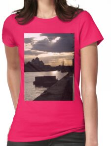 The River Liffey Womens Fitted T-Shirt