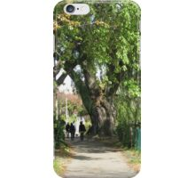 Autumn Slowly Comes to Boston - Original iPhone Case/Skin