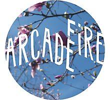Arcade Fire/Tulip Magnolia Photographic Print