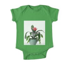 House plant On white background  One Piece - Short Sleeve