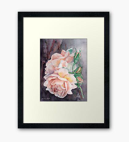 Peach Perfect Framed Print