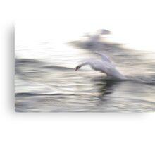 The Swan #2 Canvas Print