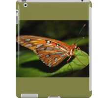 Gorgeous wings iPad Case/Skin
