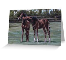 Foal play Greeting Card